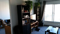 Downtown Apartment Sublet June - July