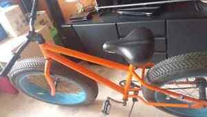 Vélo pour adulte