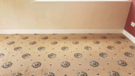 Carpet 3.5m x 3.1m