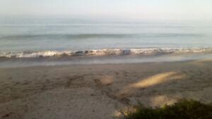 condo on beach Bucerias Nayarit