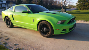 2014 Ford Mustang V6 305 HP Custom Wheels FINANCE Priced to Sell