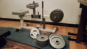 SPECIAL machine à mollets/ calf machine + 240 lbs free weights