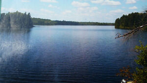2000 feet Waterfront property on Secluded Lake and River. Peterborough Peterborough Area image 2