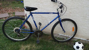"2 26"" adult mountain bikes in good condition"