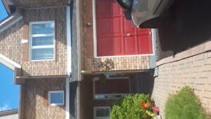 Furnished bsmt apt. or room for rent woodbridge hwy 7 andston