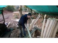 TMT FORESTRY AND FENCING SERVICES SURREY HAMPSHIRE WEST SUSSEX