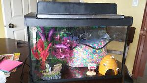 Fish tank 5 gallons