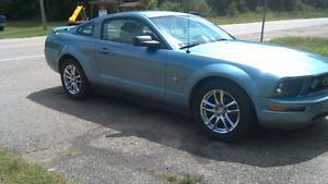 2006 Ford Mustang Pony Edition