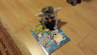 Furby with Training Guide