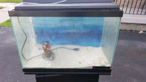 20 Gallon Fish Aquarium & Accessories with Stand