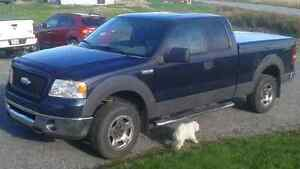 2006 Ford F-150 XLT 4x4 Camionnette