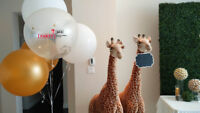PARTYBOX - QUALITY BALLOON DECORATION