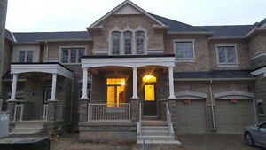 Brand New Executive Townhouse Oakville / Halton Region Toronto (GTA) image 1