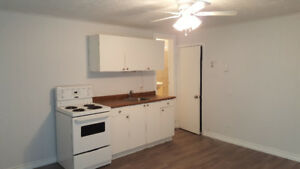 Renovated Bachelor available on July 1st – 5 min. from Ottawa