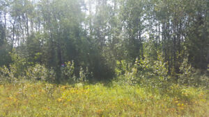 **NEW PRICE** 0.45 acre Lot in the Village of Christopher Lake