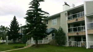 Southside 2 Bedroom Apartment Available, April is Rent Free