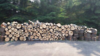 Maple firewood for sale (6-7 face cords)