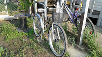 Great Bicycle NEED GONE BY WEDNESDAY