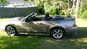 2002 Ford Mustang GT 4.6