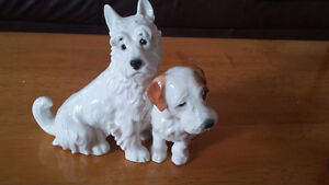 China terrier dogs
