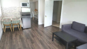 One bedroom and one dinning room to rent ( lady only)
