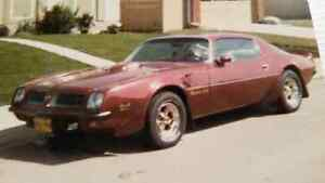 WANTED: My dad's old 1974 trans am! Or info please