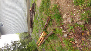 Cedar Posts and Rails for Sale