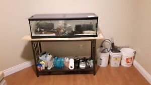 56 gallon fish tank for sale
