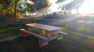 White Pine log picnic table