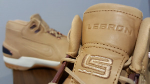 "LeBron 1 Nike Air Zoom Generation ""Vachetta Tan "" QS DS"