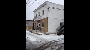 Lower Duplex Studio Style 1 bedroom for rent in Lachine