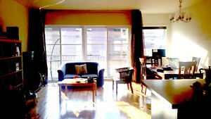 Furnished + all included BEAUTIFUL CONDO - Sept 2016 - June 2017