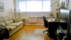 Large 2 Bedroom Apartment -  AVAILABLE IMMEDIATELY