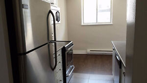 Renovated 1 Bedroom Apartment for Rent