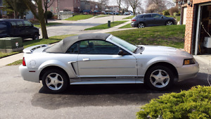 2001 Ford Mustang- Convertible