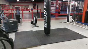 Attention Personal Trainers - Grow your client base here! Kitchener / Waterloo Kitchener Area image 7