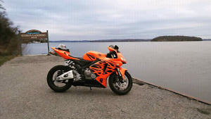 2006 cbr600rr tribal orange edition