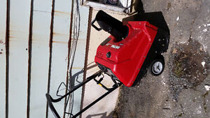 Electric /gas snow blower