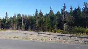 East End Building Lot for Sale (HST Included and a Drilled Well) St. John's Newfoundland image 6