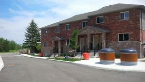 3B 32 Elmdales Dr-New One Bedroom Apartments on Elmsdale