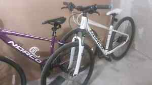 2x Norco XFR3 Forma 29er, his and hers $500 each
