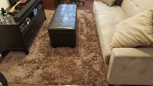 Home Outfitters - Light brown Shag Rug