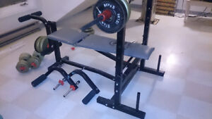 Weight Bench (175 pounds worth of weights)