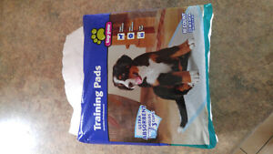 Pet training pads 10 count