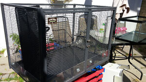 Critter nation rat cage London Ontario image 2