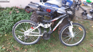 ironhorse mountain bike