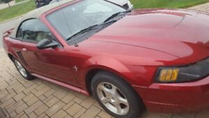 2003 Ford Mustang Poney Cabriolet
