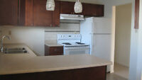 Eastern Passage Main level 3 bedroom flat