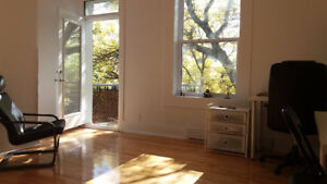Renovated and beautiful 4 1/2 in Rosemont -Nov 1 lease transfer