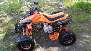 T1 rebel  4 wheeler